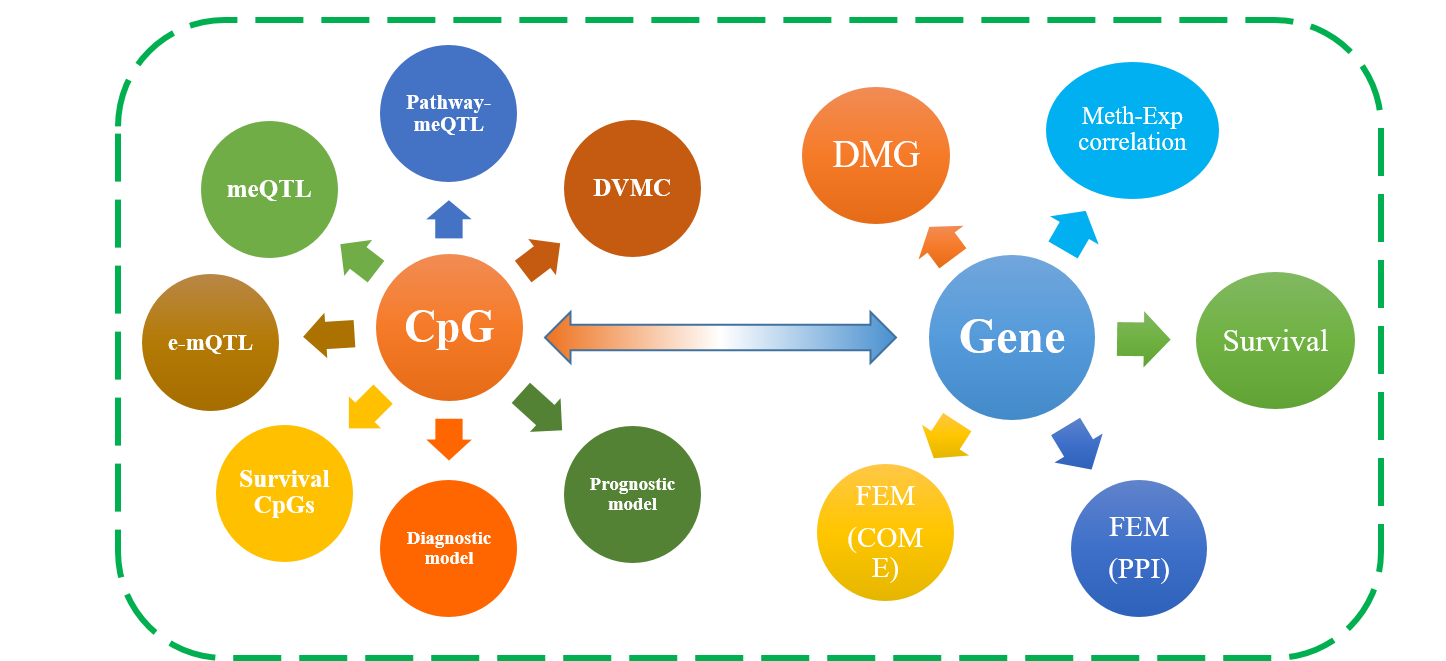 Overview of DNMIVD